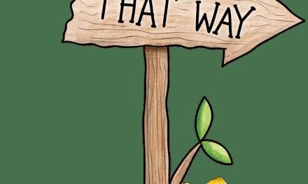 Les étapes de la formation | Etape n° 7